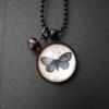 Halsband med fjäril, 200 kr
