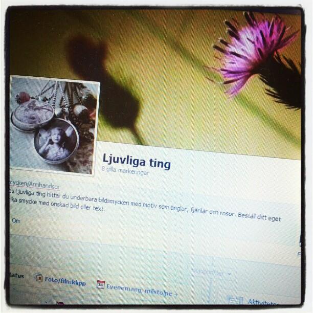 Facebooksidan börjar ta form :)